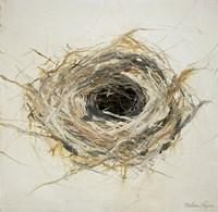 Bird's Nest Fine Art Print