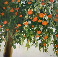 Orange Tree Fine Art Print