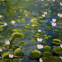 Lily Pads II Fine Art Print