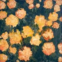 Marigolds Fine Art Print