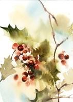 Berries I Fine Art Print