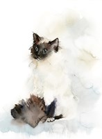 Feline Fine Fine Art Print