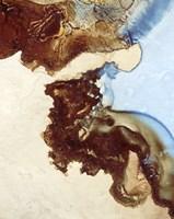 Earth Tone Abstract III Fine Art Print