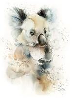 Cool Koala Fine Art Print