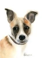 Pup Fine Art Print