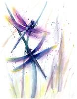 Dragonflies II Fine Art Print