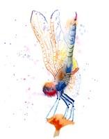 Dragonfly II Fine Art Print