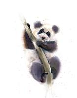Pandy Fine Art Print