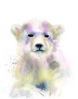 Bear Cub Fine Art Print