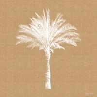 Burlap Palm Tree Fine Art Print