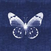 White Butterfly I Fine Art Print