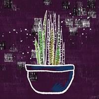 Purple Snake Plant Fine Art Print