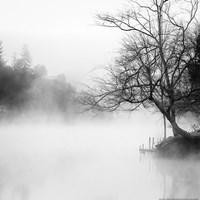 Fog on the Lake Fine Art Print
