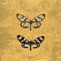 Pair of Butterflies on Gold Fine Art Print