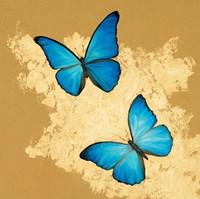 Cerulean Butterfly I Fine Art Print