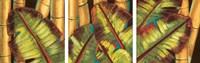 Tropical Pastel Fine Art Print
