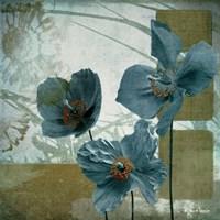 Cerulean Poppies II Fine Art Print