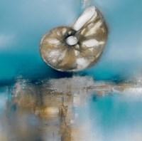 Blue Shores Nautilus Fine Art Print
