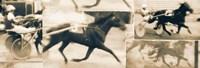 Sulky Race Fine Art Print