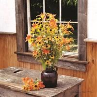 Wildflower Window Fine Art Print