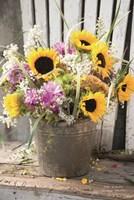 Bucket of Sunshine Fine Art Print