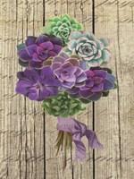 Succulent Bouquet III Fine Art Print