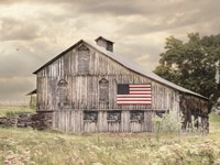 Rural Virginia Barn Fine Art Print