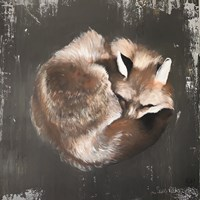 Sleeping Fox No. 11 Fine Art Print