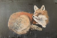 Starry, Starry Night Fox Fine Art Print