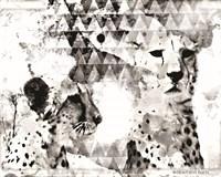 Modern Black & White Cheetahs Fine Art Print
