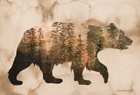 Brown Woods Bear Silhouette Fine Art Print