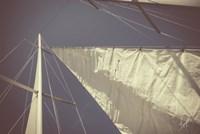 Sailing a Line Fine Art Print