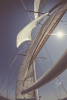 Clear Sailing Fine Art Print