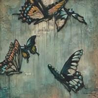 Butterflies #2 Fine Art Print