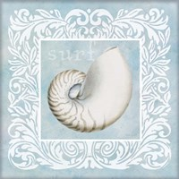 Sandy Shells Blue on Blue Nautilus Fine Art Print