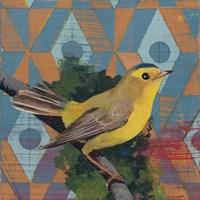 Wilsons Warbler Fine Art Print