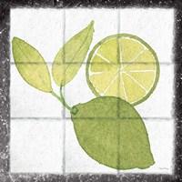 Citrus Tile VII Black Border Fine Art Print
