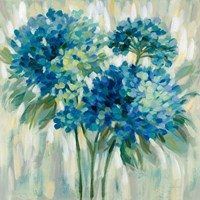 Burst of Hydrangeas Fine Art Print