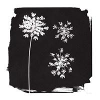 Nature by the Lake Flowers III Black Fine Art Print