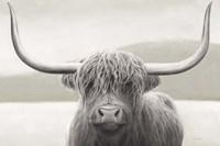 Highland Cow Neutral Fine Art Print