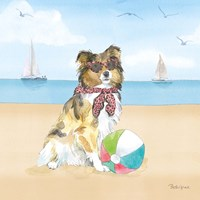 Summer Paws V No Words Fine Art Print