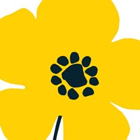 Pop Art Floral I Yellow Framed Print