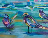 Indigo Gulls Fine Art Print