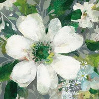Anemone and Friends V Fine Art Print