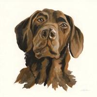 Oscar Fine Art Print