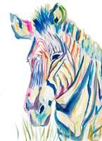 Colorful Zebra Fine Art Print
