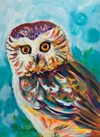 Colorful Owl Fine Art Print