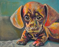 Puppy Face Fine Art Print