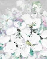 White Orchids Fine Art Print
