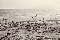 Dream of the Beach II Fine Art Print